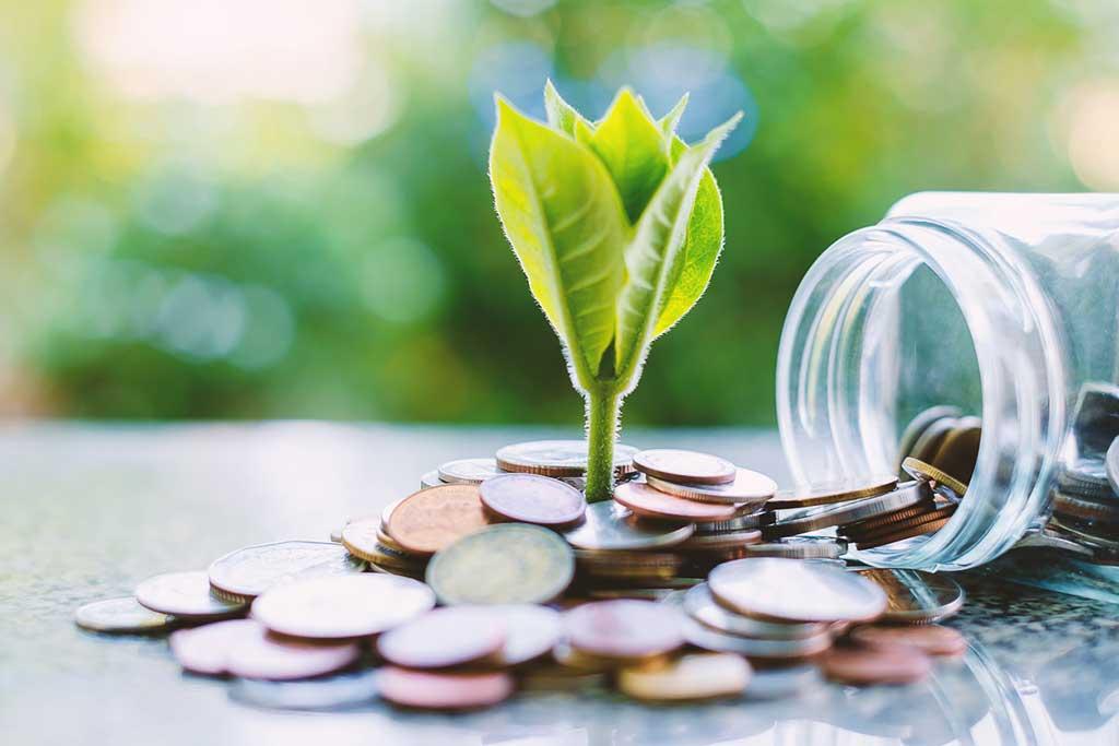 Fondspararna tankar grönt under rekordstark månad